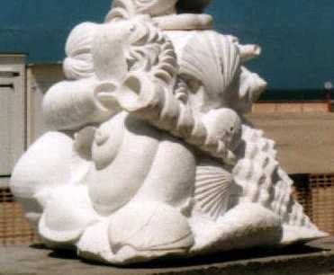 foto fossielenblok